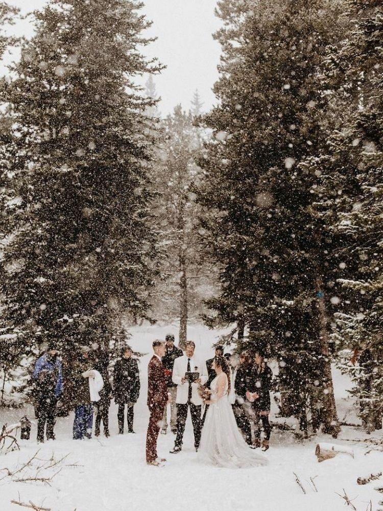 Elopement in the snow surrounded by trees