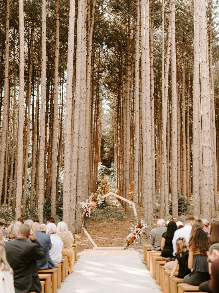 outdoor wedding venues pinewoods forest