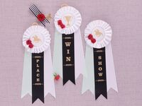 'Place,' 'Win' and 'Show' in gold type on black ribbon, framed by pastel ribbons and white top