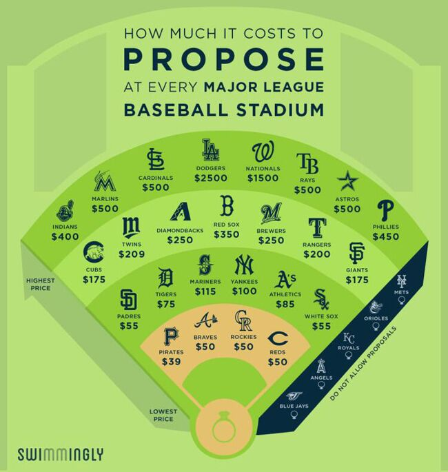 Different Baseball Proposal Costs | Swimmingly | Blog.theknot.com
