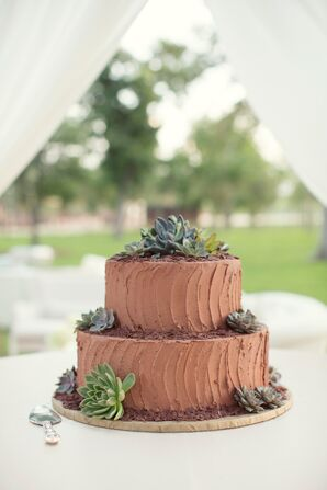 Chocolate Groom's Cake With Succulents