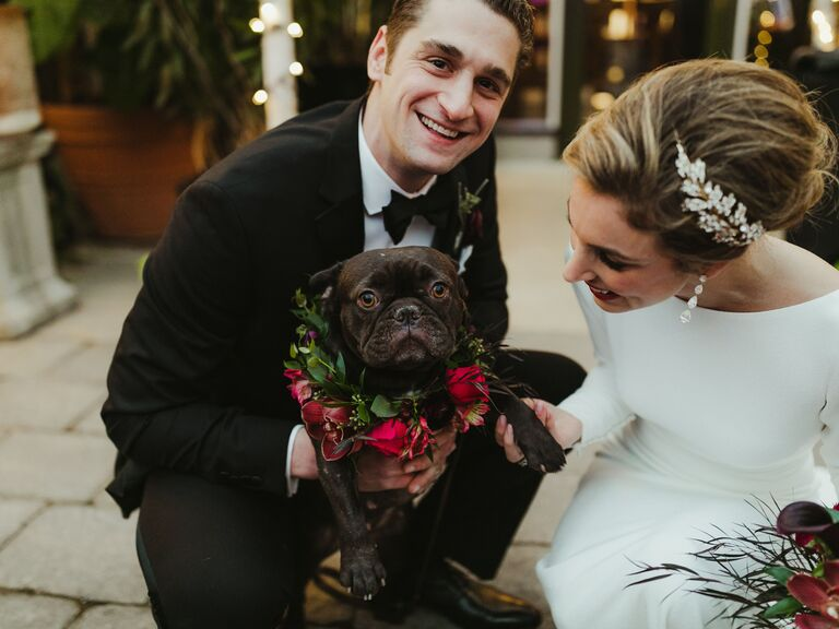 winter wedding ideas dog outfit