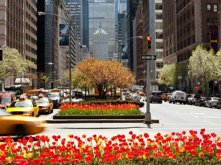 New York City Park Avenue