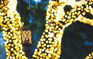 Outdoor Lighting at Antebellum Oaks Venue