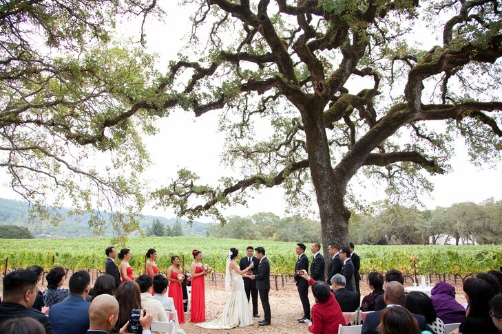 """Underneath an old oak tree with 360-degree views of the vineyard, the couple said their """"I dos."""""""