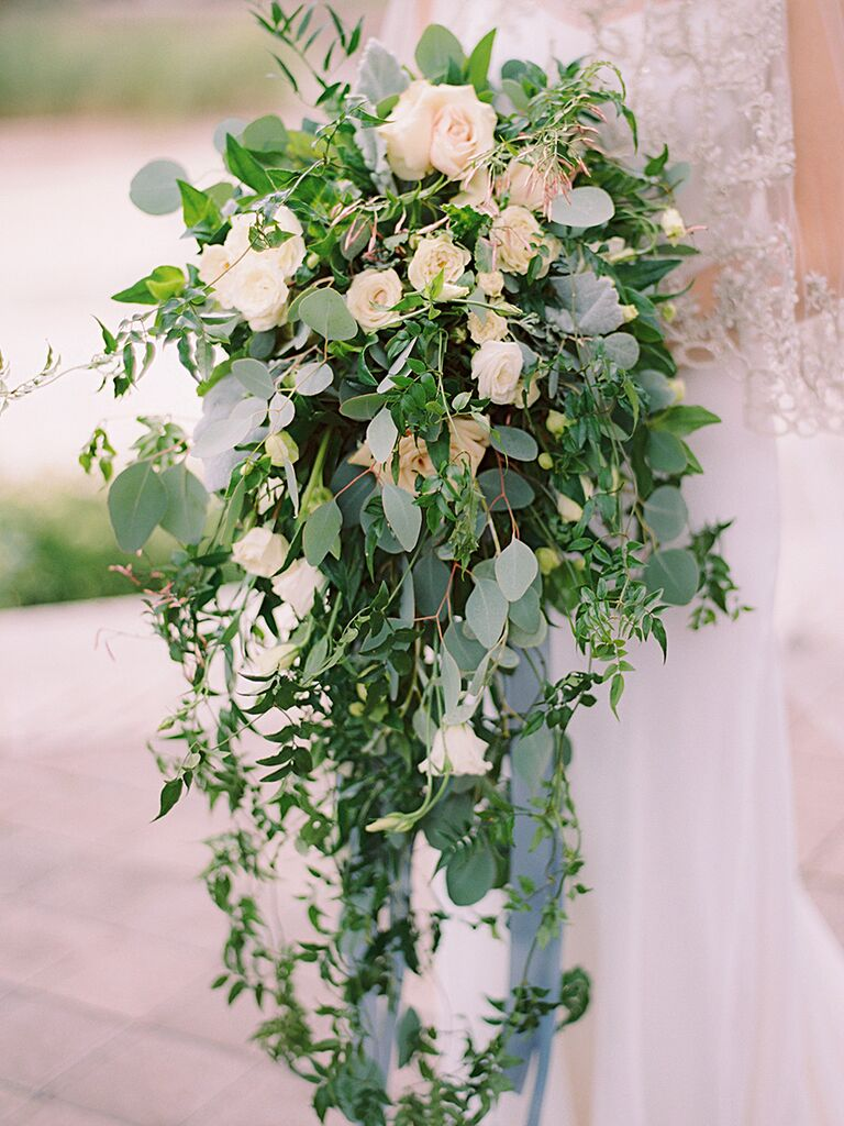 A cascading bridal bouquet with jasmine vine and dusty miller