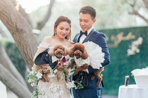 Bride and Groom Holding Two Chocolate-Brown Poodles in Wedding Attire