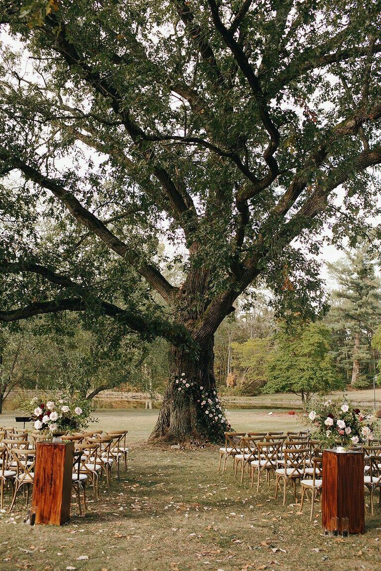 Outdoor wedding ceremony with tree backdrop